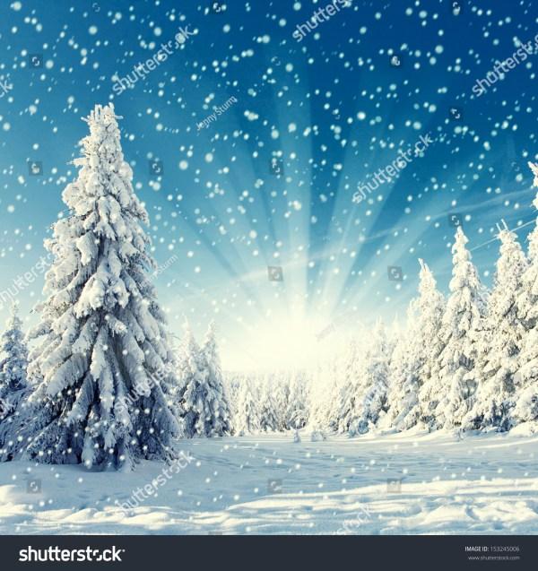 Amazing Landscape Photography Winter