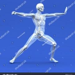 Martial Arts Diagram Three Phase Rotary Converter Wiring Anatomy Stock Photo 66526930 Shutterstock