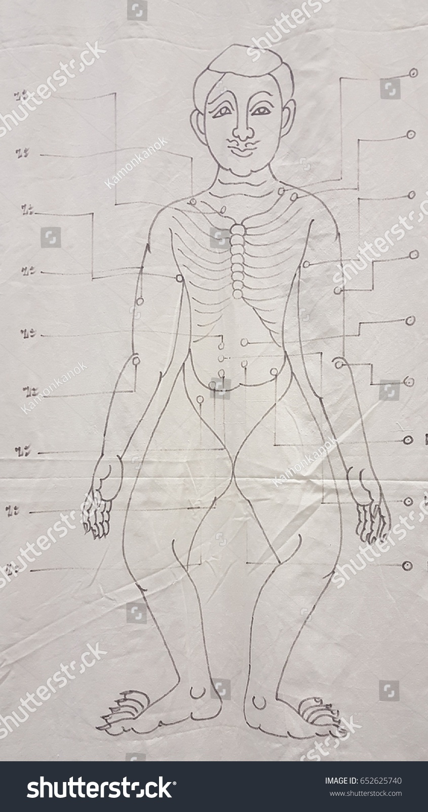 hight resolution of ancient traditional thai massage body drawing diagram on white background