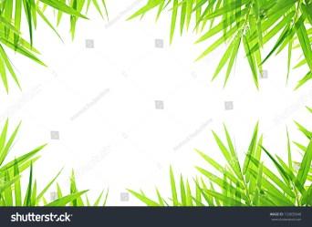 border bamboo leaf background shutterstock