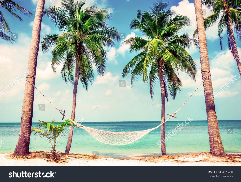 Beautiful Beach Hammock Between Two Palm Stock Photo