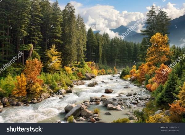 beautiful colorful landscape