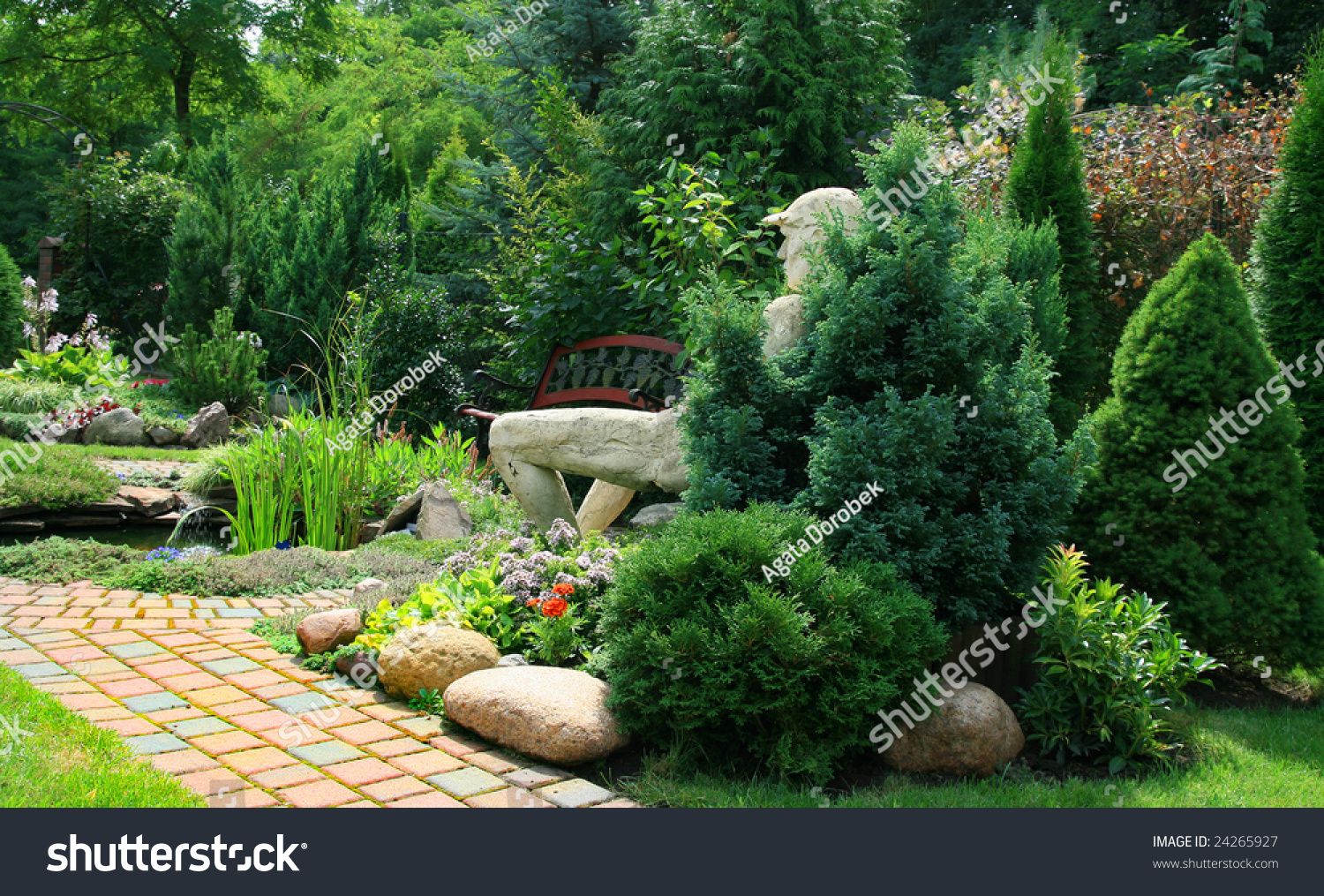 Beautiful Garden My Garden Poland Stock Photo 24265927