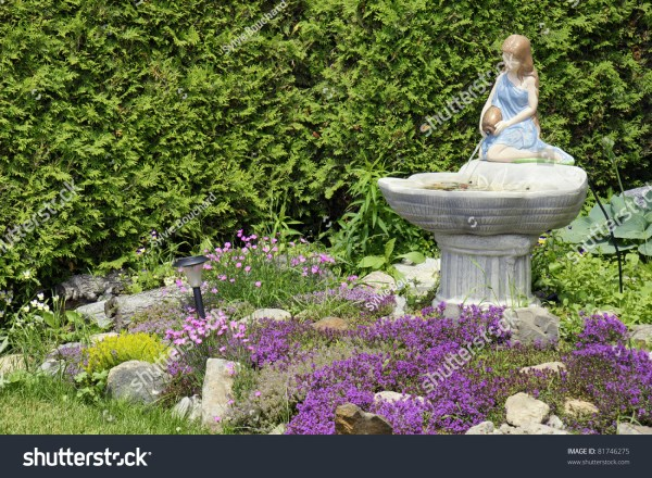 beautiful landscaping front yard