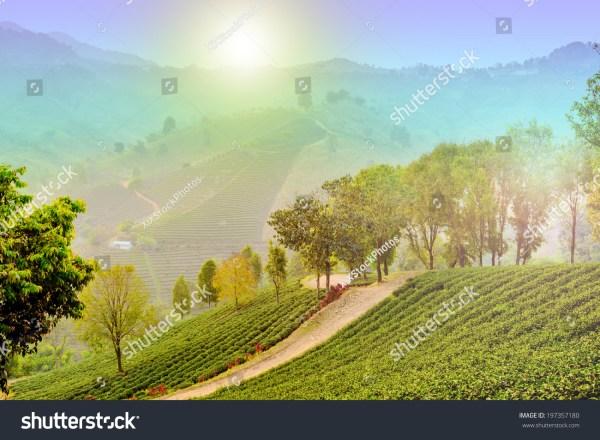 Beautiful Mountain Landscape with Rainbow