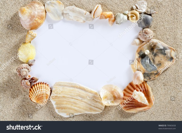 Border Frame Summer Beach Shells Blank Stock Photo