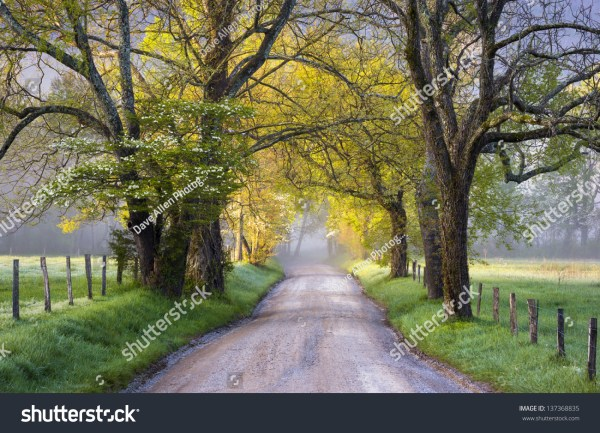 Cades Cove Great Smoky Mountains National Stock 137368835 - Shutterstock