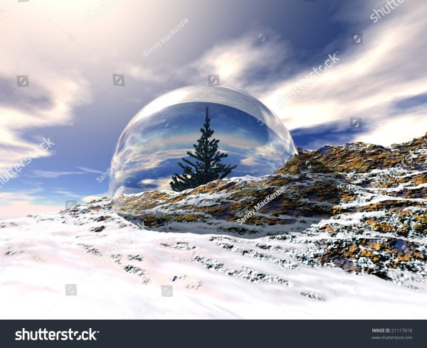Christmas Tree Snow Globe Rocky Mountain Stock