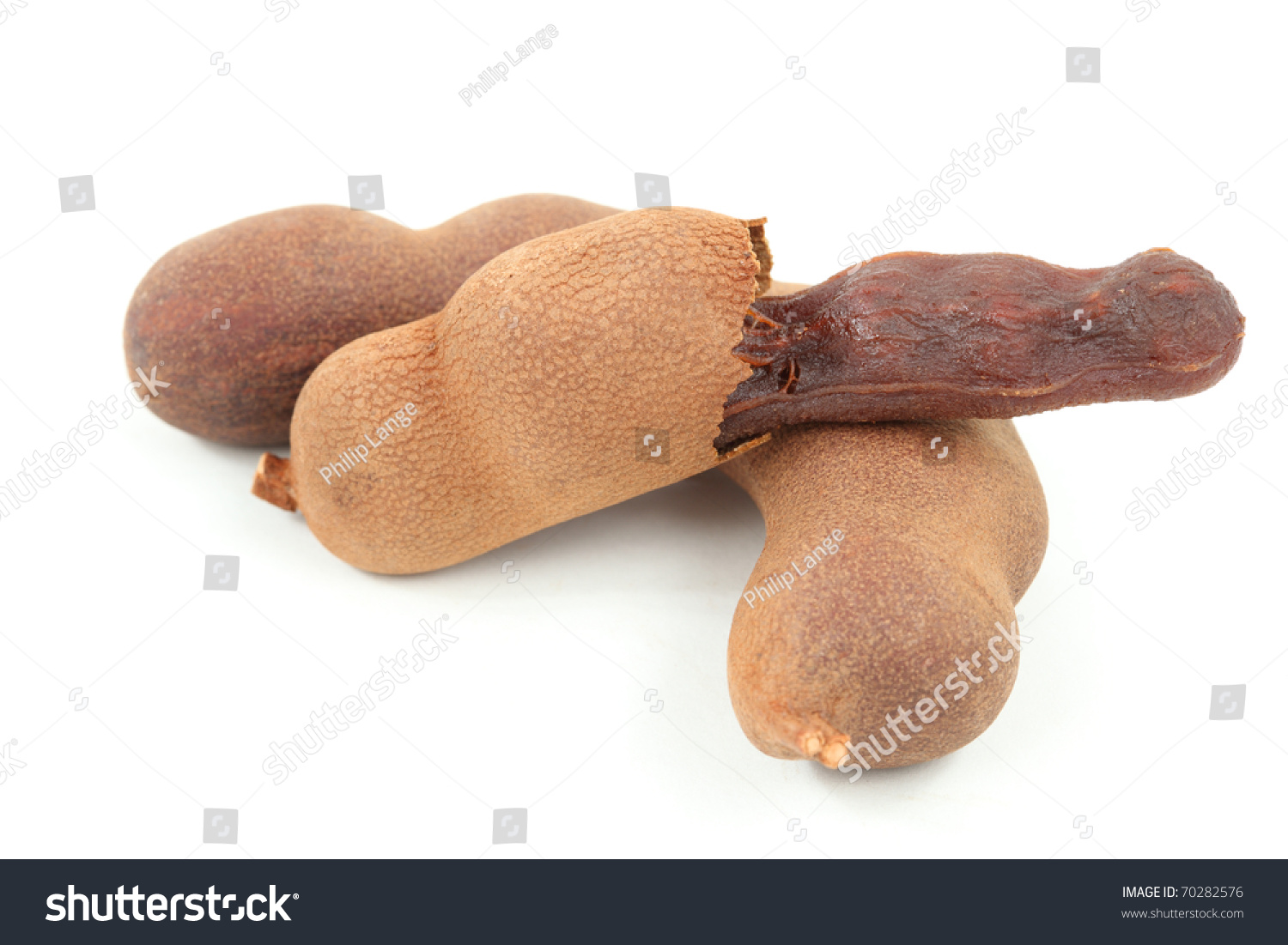 Closeup Of Tamarind Fruits Over White Background Stock Photo 70282576 : Shutterstock