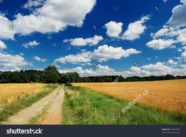 Country Landscape Stock 15970339 Shutterstock