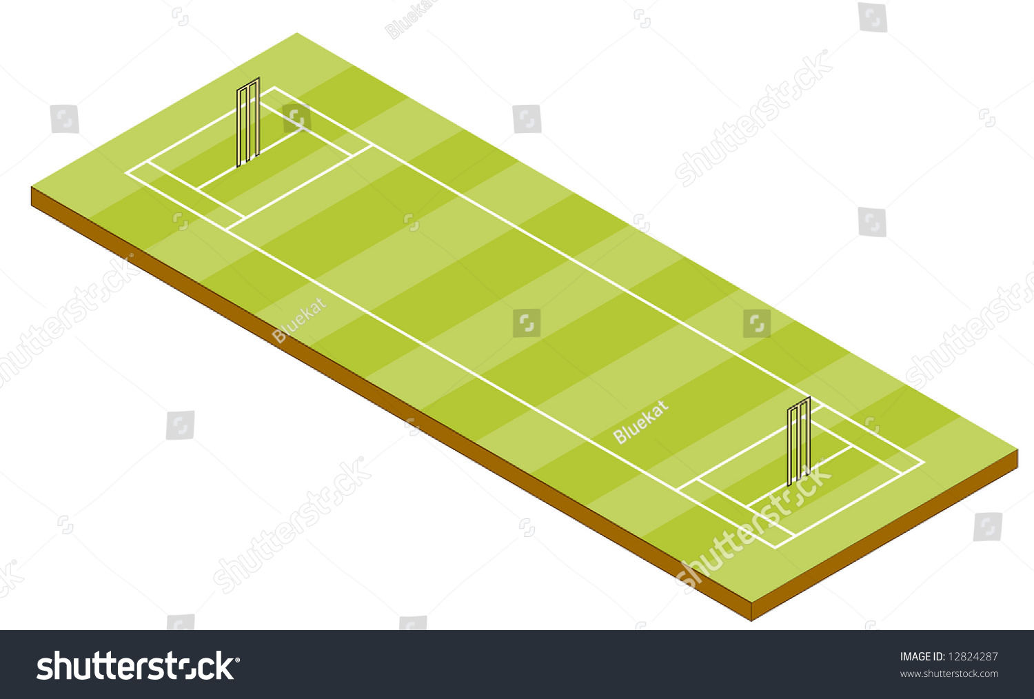 hight resolution of cricket pitch isometric view