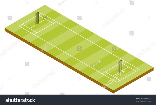 small resolution of cricket pitch isometric view