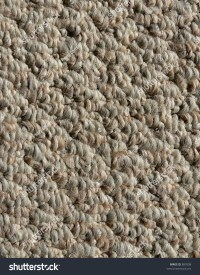Best Berber Carpet For Bat - Carpet Vidalondon