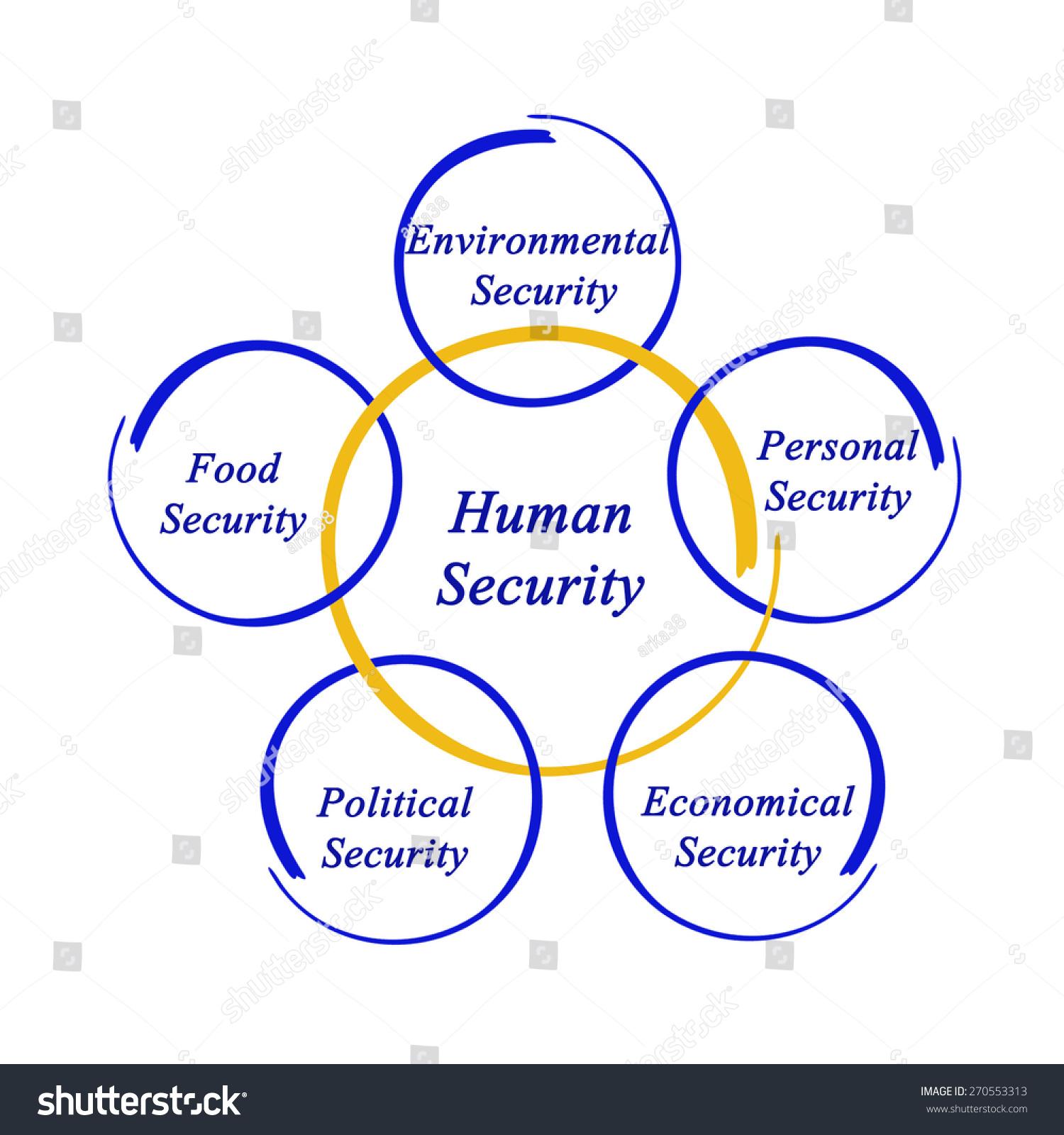 diagram human security stock