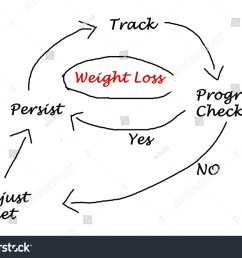 diagram weight loss stock illustration 175955267diagram of weight loss [ 1500 x 1162 Pixel ]