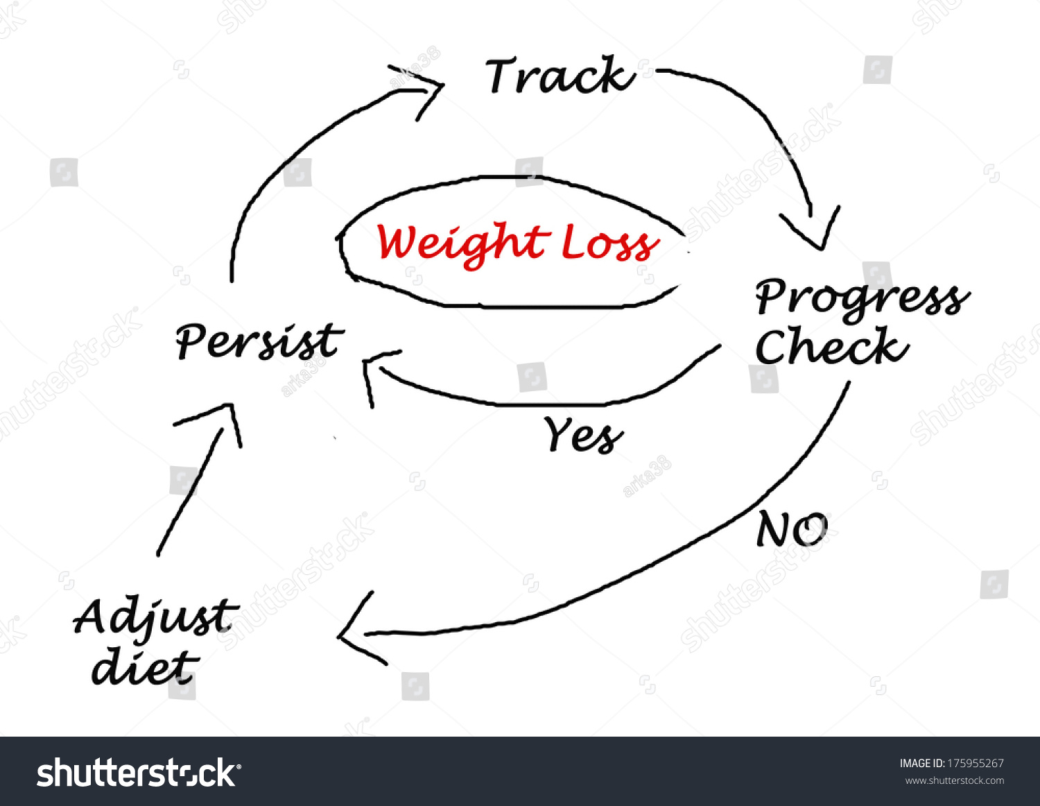 hight resolution of diagram weight loss stock illustration 175955267diagram of weight loss