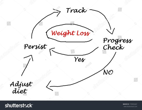 small resolution of diagram weight loss stock illustration 175955267diagram of weight loss