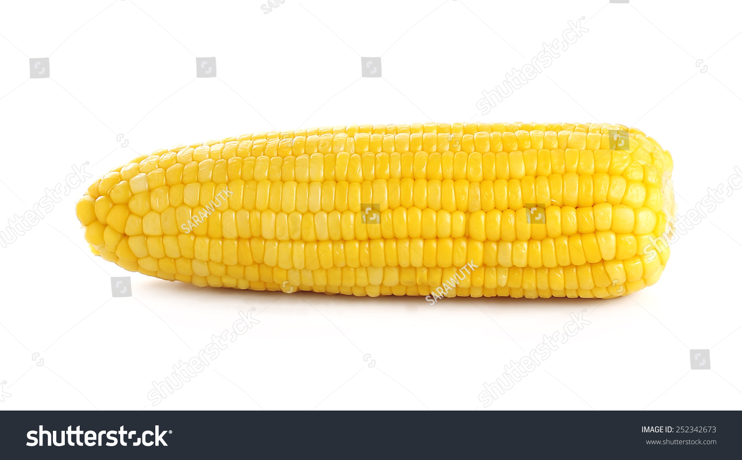 Ears Of Sweet Corn Isolated On White Background Stock Photo 252342673 : Shutterstock
