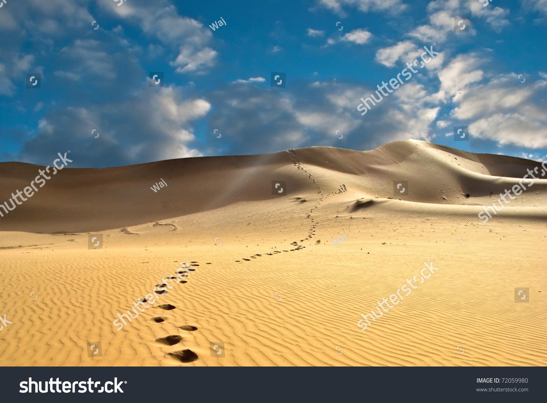 Footprints Desert Beach Sand Stock Photo