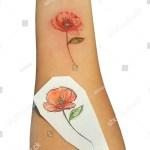 Fresh Poppy Flower Tattoo Sketch On Stock Photo Edit Now 1518367493