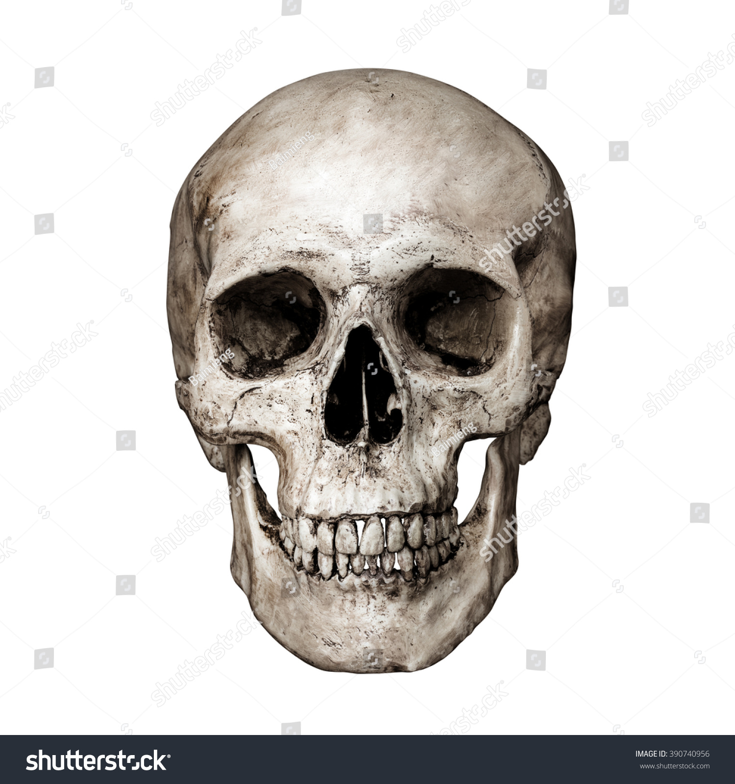 Front Side View Of Human Skull On Isolated Black