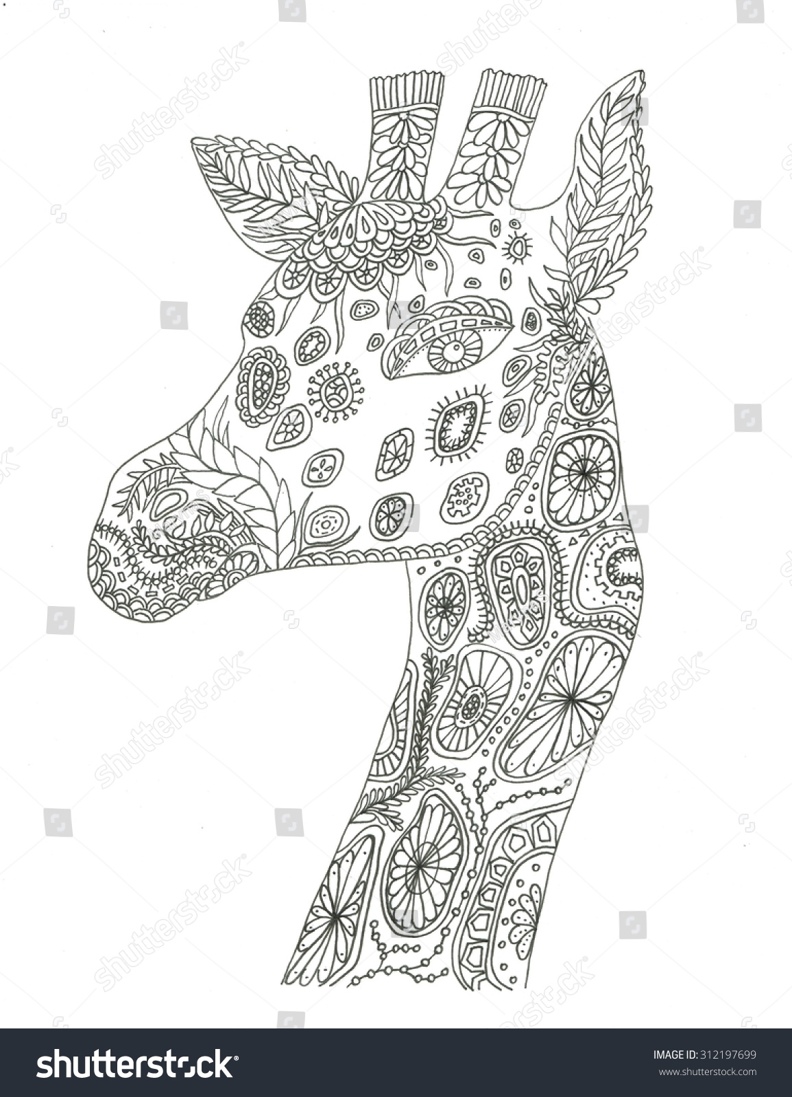 Giraffe Portrait Coloring Page Stock Photo 312197699