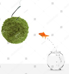 goldfish leaping towards green planet bait isolated on white [ 1305 x 1600 Pixel ]