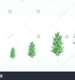 green tree with leaf growth diagram business cycle development eco concept the different [ 1500 x 945 Pixel ]