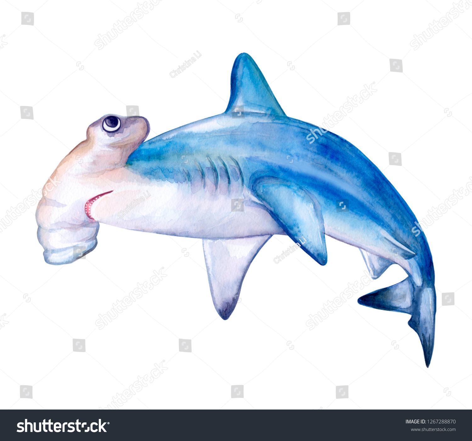 hight resolution of hammerhead shark white death of a shark isolated on a white background watercolor illustration template card clipart close up illustration