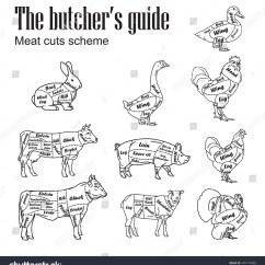 Diagram Of Farm Animals Hei Distributor Hand Drawn Set Butcher Cut