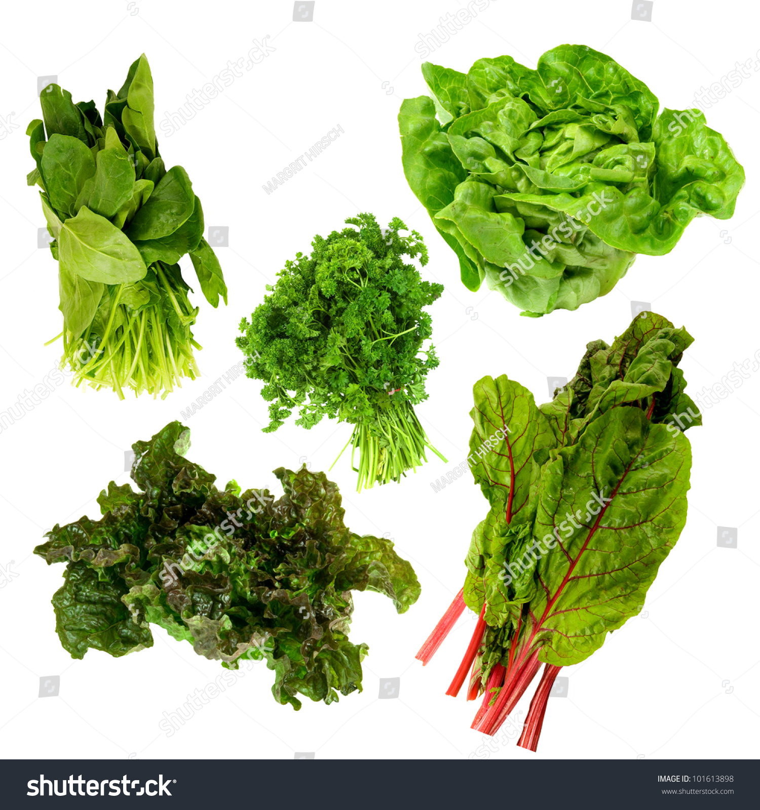 Healthy Dark Green Leafy Vegetables,Kale,Spinach,Parsley,Boston Lettuce,Red Tipped Lettuce On A White Background Stock Photo 101613898 : Shutterstock