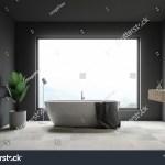 Interior Luxury Bathroom Gray White Marble Stock Illustration 1323449606