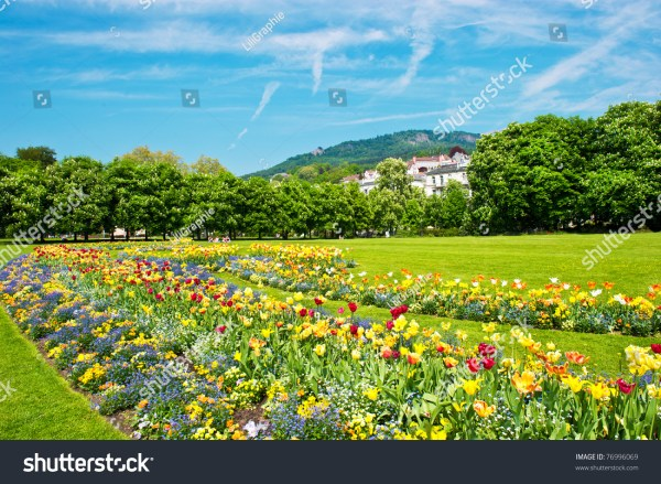landscape with colorful flowers