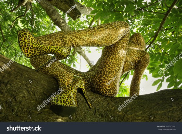 Leopard Print Zentai Fetish Catsuit Girl Stock