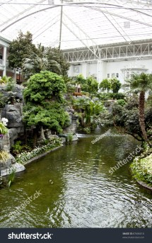 Opryland Hotel Garden Stock 87606010 Shutterstock