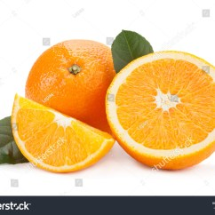 Parts Of An Orange Fruit Diagram Vehicle Wiring Diagrams Free Citrus Part Isolated On Stock Photo 376793791