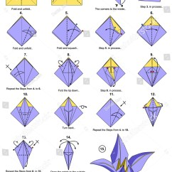 Origami Hummingbird Diagram Instructions Home Audio Wiring Lily Steps Stock Photo 433216609 Shutterstock