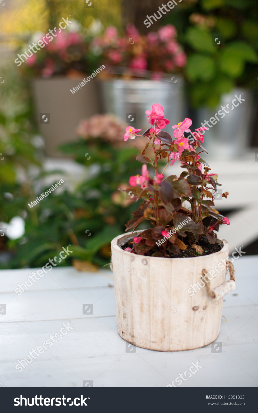 Decorated Christmas Fireplace On A Brick Wall Stock Photo Image Pink Flowers Wooden Bucket Outdoors Stock Photo 115351333