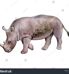 rhinoceros rhino isolated on white background watercolor illustration template clipart handmade [ 1500 x 1318 Pixel ]