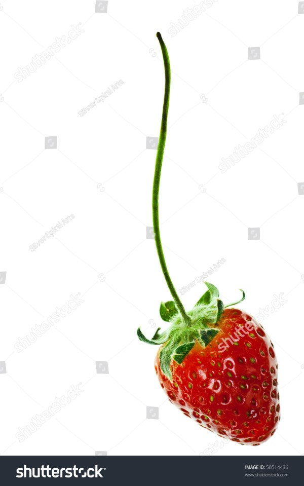 Ripe Red Strawberry Stem Isolated Stock 50514436