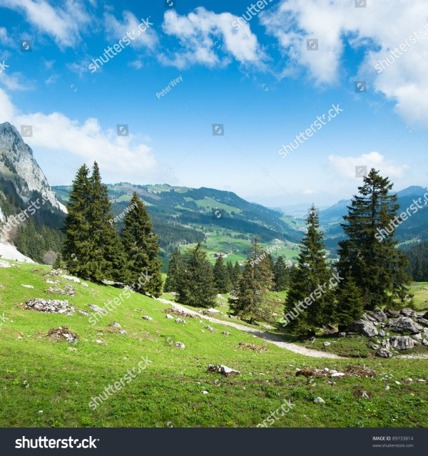 rural subalpine landscape mythen
