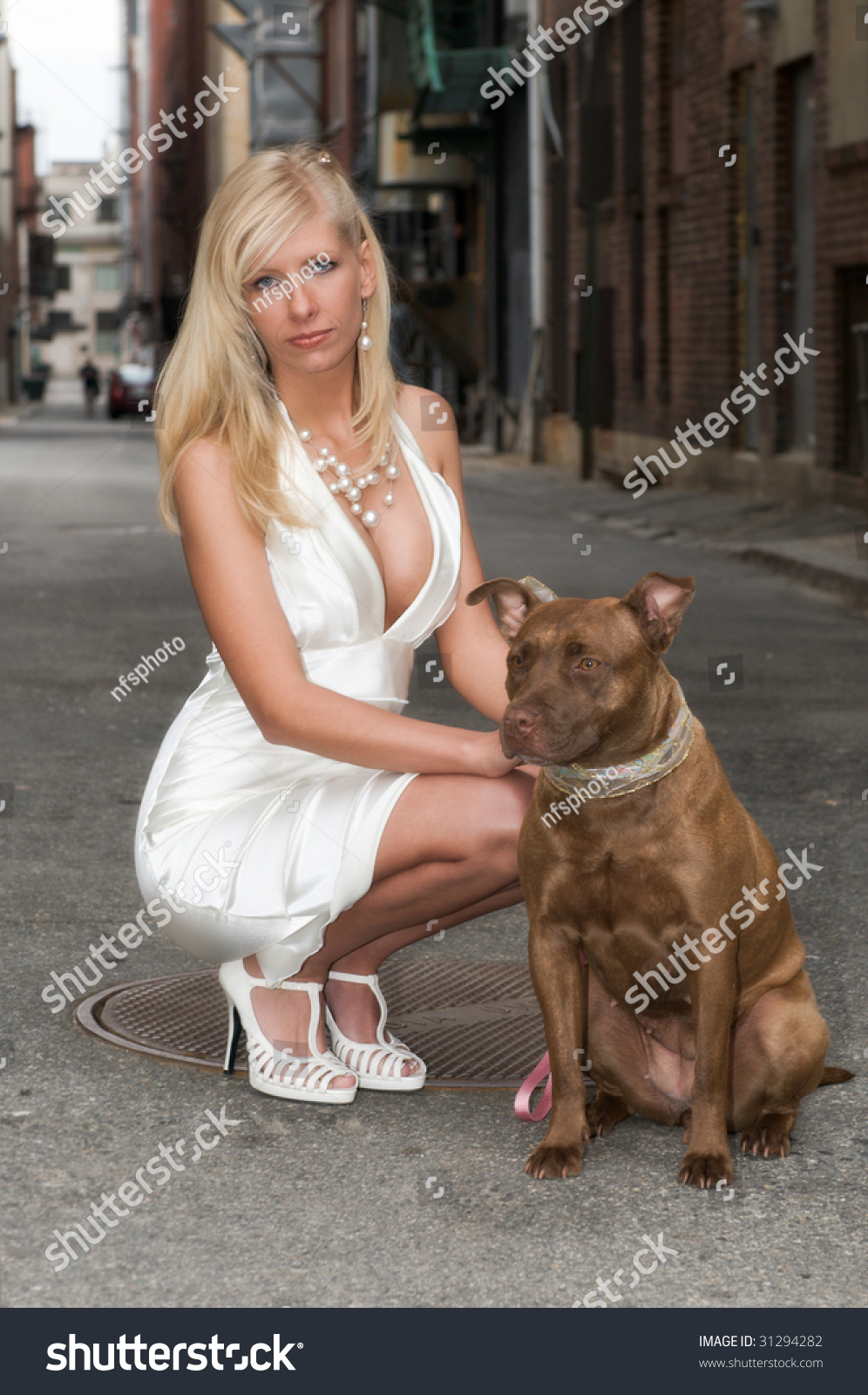 dog high chair red salon chairs sexy beautiful blond woman brown pit stock photo 31294282 - shutterstock