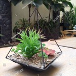Succulent Terrarium On Wooden Table Garden Stock Photo Edit Now 1370820689