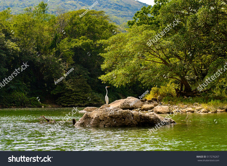Sumidero Canyon Chipas Mexico Stockfoto 517276267