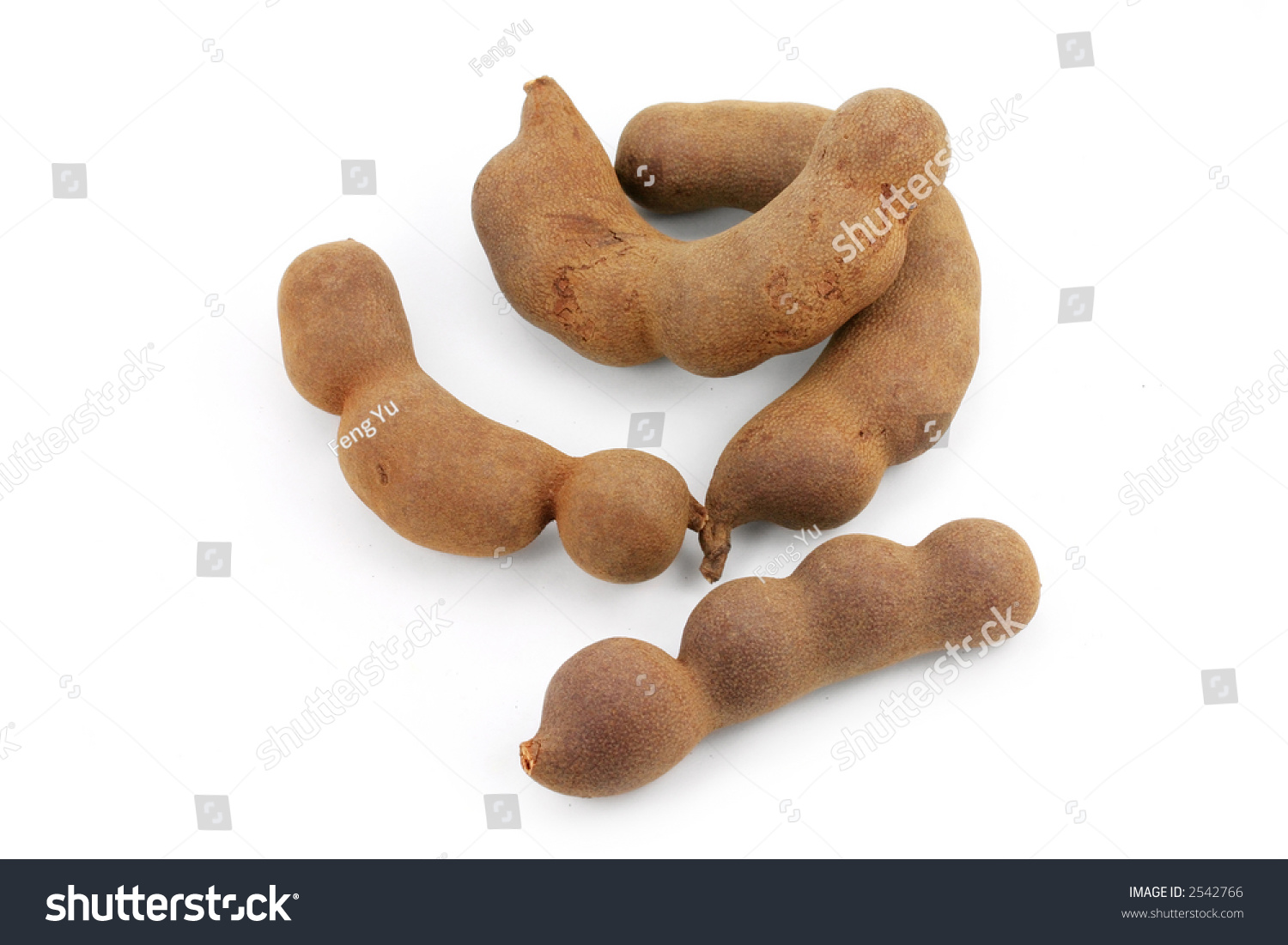 Tamarind. Tropical Fruit. With White Background Stock Photo 2542766 : Shutterstock