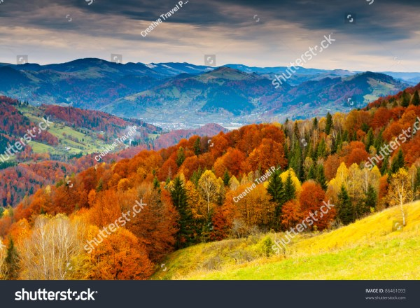 Mountain Autumn Landscape With Colorful Forest Stock 86461093 Shutterstock