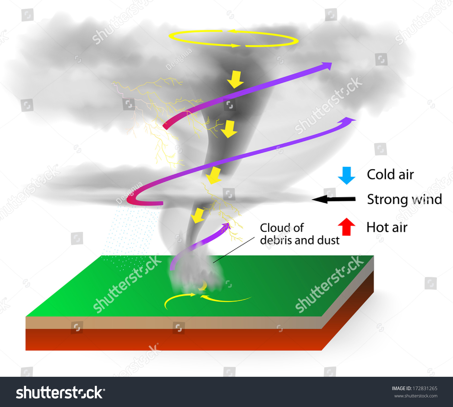 tornado supercell diagram from to seed plant tornadoes visible condensation funnel whose narrow stock