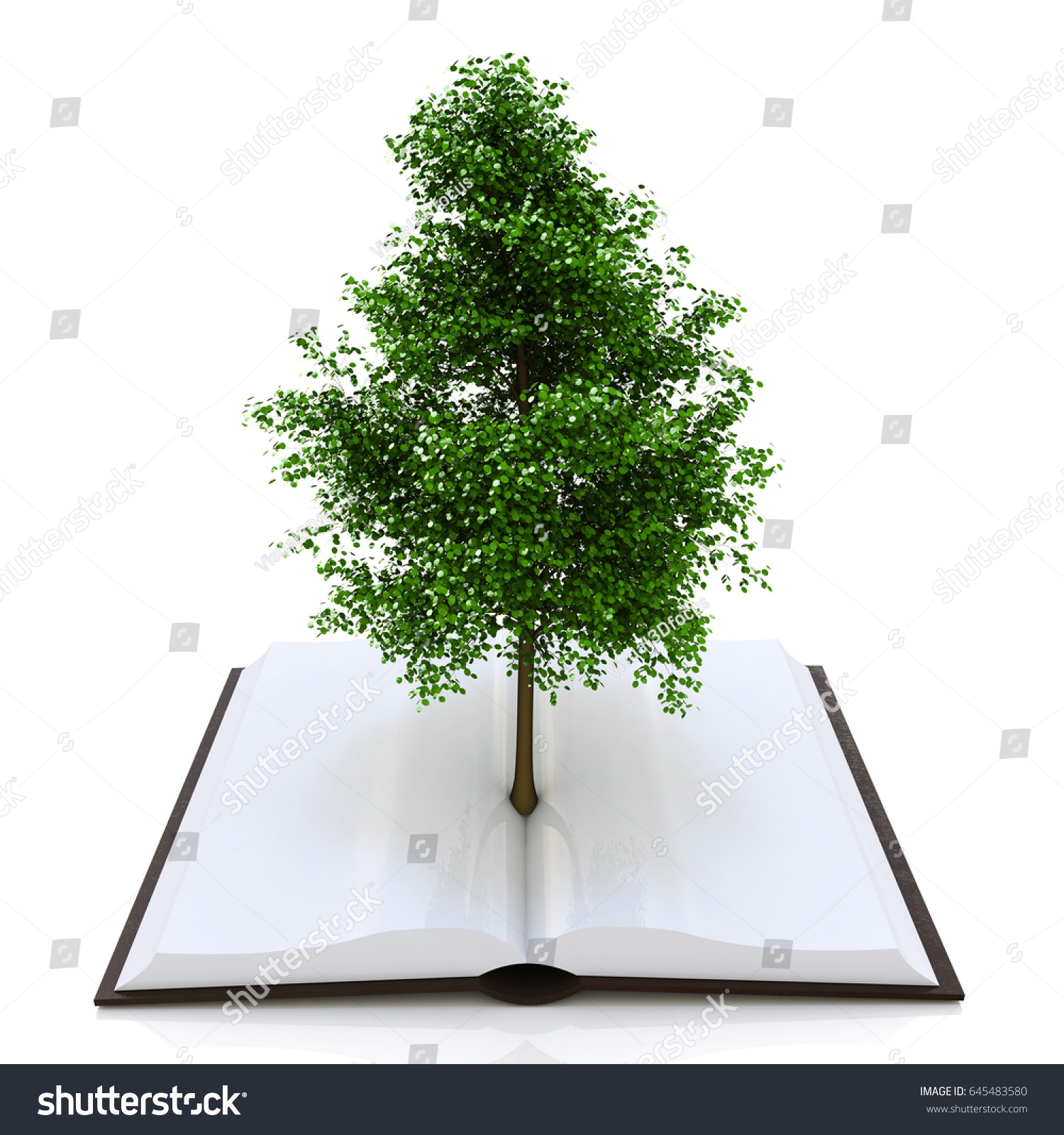 hight resolution of tree growing from an open book alternative recycling concept in the design of access to