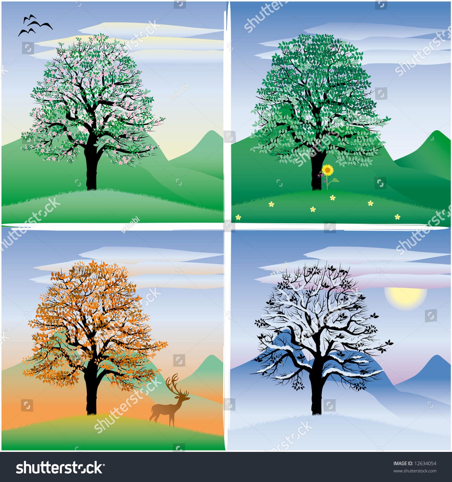 Tree Through The Four Seasons Stock Photo