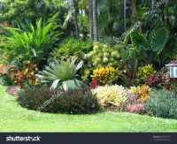 Tropical Landscaping Foliage Shrubs Palms Grass Stock ...